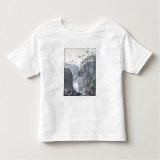 Explorers with Humboldt's Expedition in the Basalt Shirt