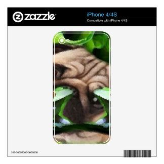 Exploring Frog Life iPhone4 Skin Skin For The iPhone 4