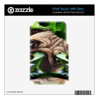 Exploring Frog Life iPod Touch Skins For iPod Touch 4G