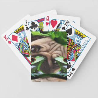 Exploring Frog Life Playing Cards