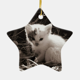 Exploring Kitty Ceramic Ornament