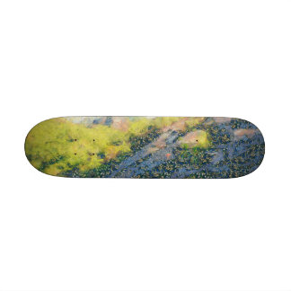 Exploring the hill skate deck