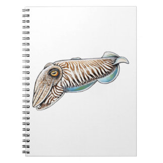 EXPLORING THE REEF NOTEBOOK