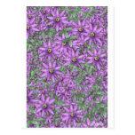 Explosión de la flor de la pasión tarjeta postal