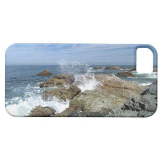 Explosión de la onda iPhone 5 funda