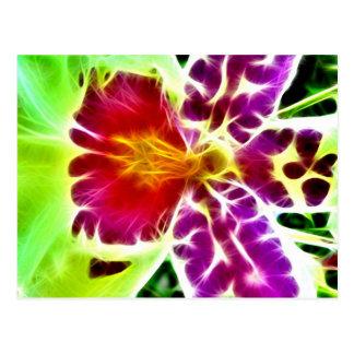 Explosión de la orquídea postales