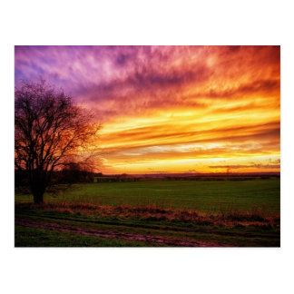 Explosión rural de la puesta del sol tarjetas postales
