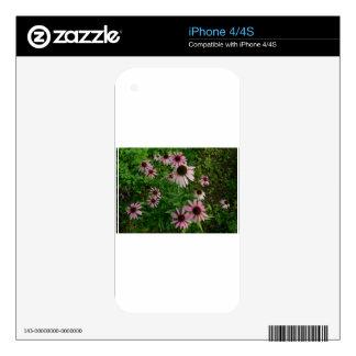 Explosión Tom Wurl.jpg del Echinacea iPhone 4S Skin