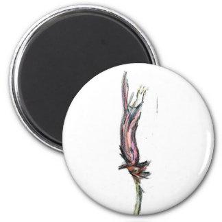 Expose of Vita 2 Inch Round Magnet