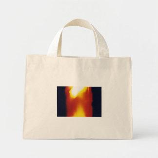 exposed 17 bag