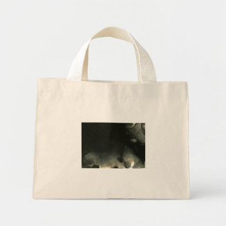 exposed 27 bag