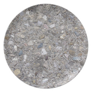 Exposed Aggregate (printed, not made of concrete) Dinner Plate