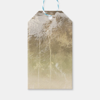Exposed Bear Gift Tags