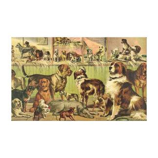 Exposición canina 1893 lona estirada galerías