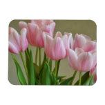 Expresión del tulipán imán