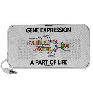 Expresión génica a la parte de vida (réplica de la sistema de altavoz