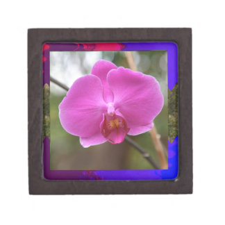 Expresión rosada del romance del amor de la flor caja de joyas de calidad