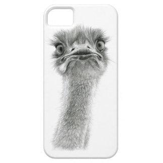 Expresión sk053 de la avestruz iPhone 5 cobertura