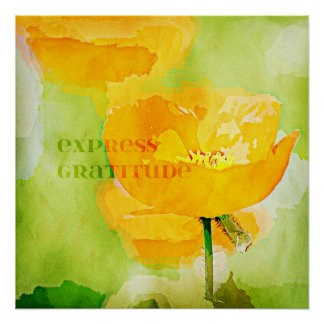 Express Gratitude Orange Poppy Poster