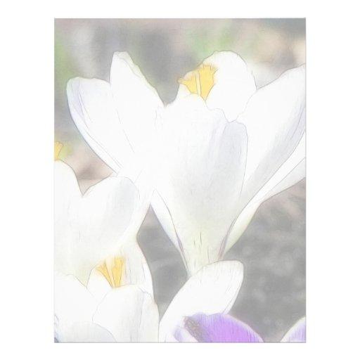 Exquisite White Crocuses Letterhead