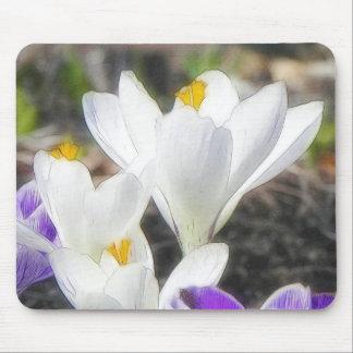 Exquisite White Crocuses Mouse Pad