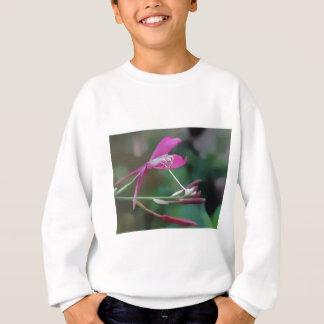 Exquisito en rosa playeras