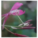 Exquisito en rosa servilleta imprimida
