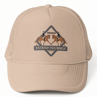 Extend Yourself Dressage Hat hat