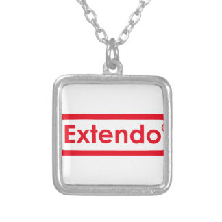 extendo silver plated necklace
