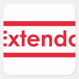 extendo square sticker