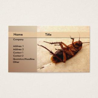 exterminator business card