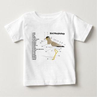 External Morphology of a Bird Vanellus Malabaricus Baby T-Shirt