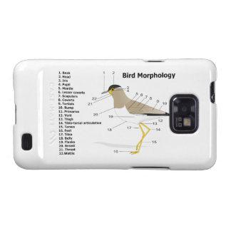 External Morphology of a Bird Vanellus Malabaricus Samsung Galaxy SII Cover