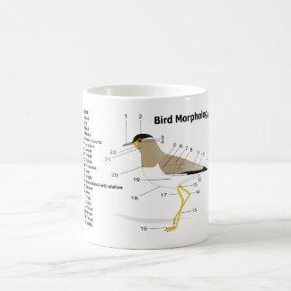 External Morphology of a Bird Vanellus Malabaricus Coffee Mug