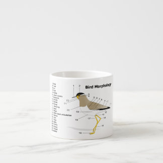 External Morphology of a Bird Vanellus Malabaricus Espresso Cup