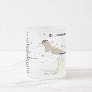 External Morphology of a Bird Vanellus Malabaricus Frosted Glass Coffee Mug
