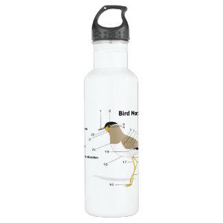 External Morphology of a Bird Vanellus Malabaricus 24oz Water Bottle
