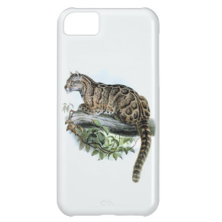 Extinct Formosa Leopard Jungle Cat iPhone 5C Case
