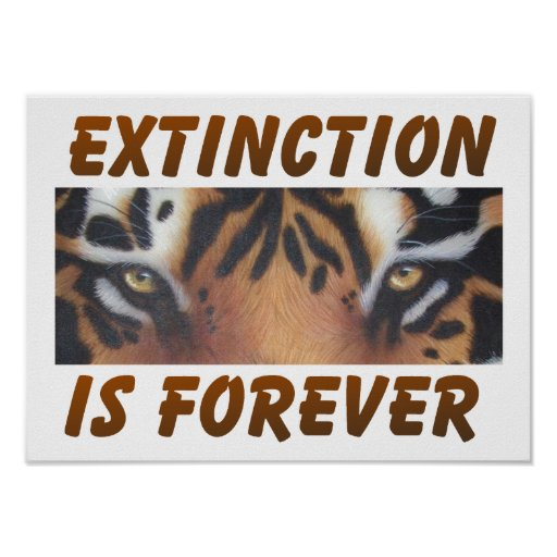 Extinction is forever posters