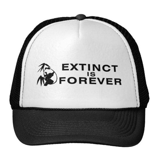 Extinto está el Forever Gorros Bordados