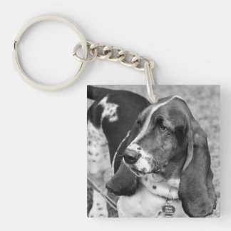 extra key for the dogwalker, petsitter, neighbor! keychain