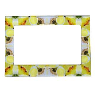 Extracto blanco amarillo hermoso marcos magnéticos de fotos