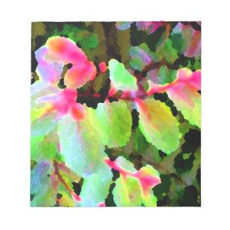 extracto colorido de la planta del snowbush blocs
