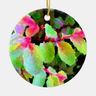 extracto colorido de la planta del snowbush adorno