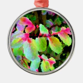 extracto colorido de la planta del snowbush adornos
