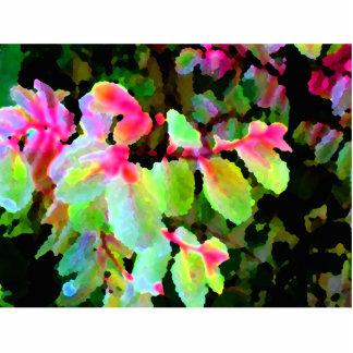 extracto colorido de la planta del snowbush escultura fotografica