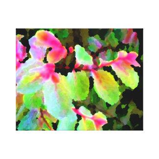 extracto colorido de la planta del snowbush impresiones en lona estiradas