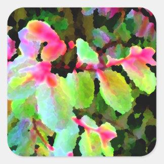 extracto colorido de la planta del snowbush calcomania cuadradas