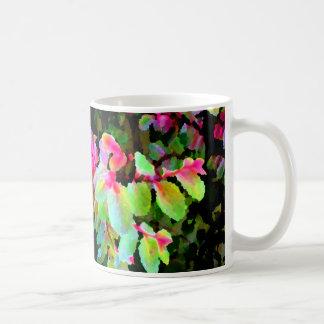 extracto colorido de la planta del snowbush tazas de café