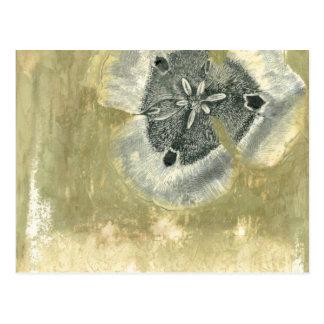 Extracto de Flowerhead con textura esmaltada Postales